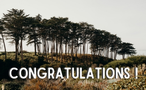 "Gift card image of the trees lining the beach with the text  ""Congratulations!"""