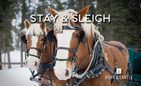 Image of horses with the text