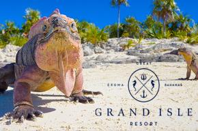 Image of lizards on the beach with the Grande Isle Resort logo