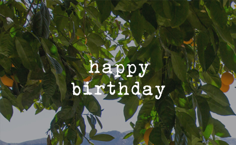 """Gift card image of a close up of an orange tree with the text """"Happy Birthday"""""""