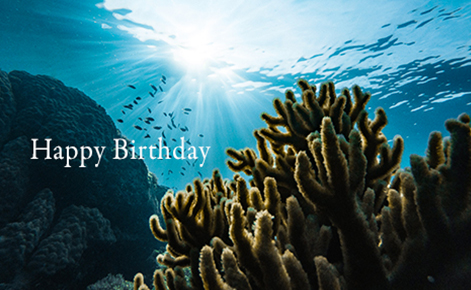 "Gift Card image of underwater shot with the text ""Happy Birthday"""